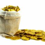 Types of Baroda Gujarat Gramin Bank Gold loans